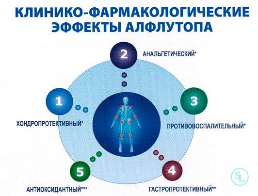 Хондропротекторы при переломе позвоночника