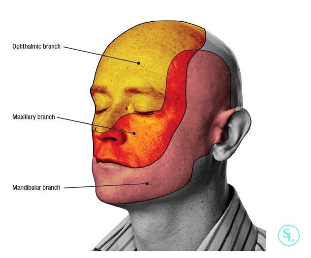 Как проверить тройничный нерв