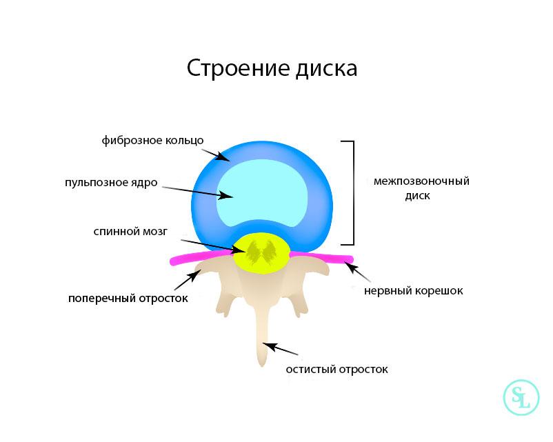 Строение диска